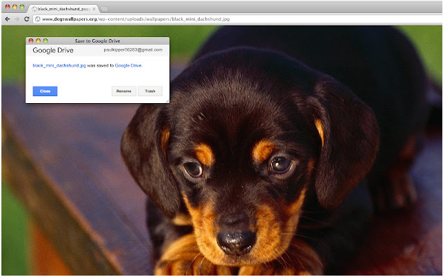 Save to Google Chrome extension